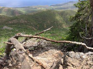 Uitzicht Christoffelberg Curacao