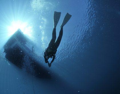 Padi duiken