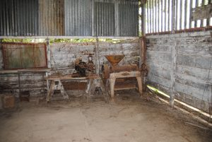 Peperpot plantage Suriname Commewijne