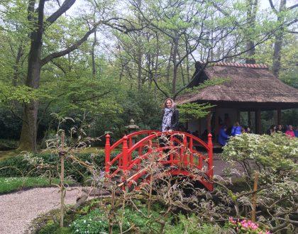 Japanse tuin, Clingendael