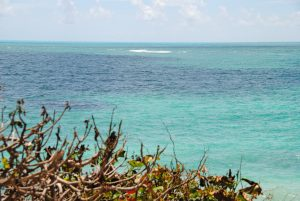 Caribische zee Tulum Mexico