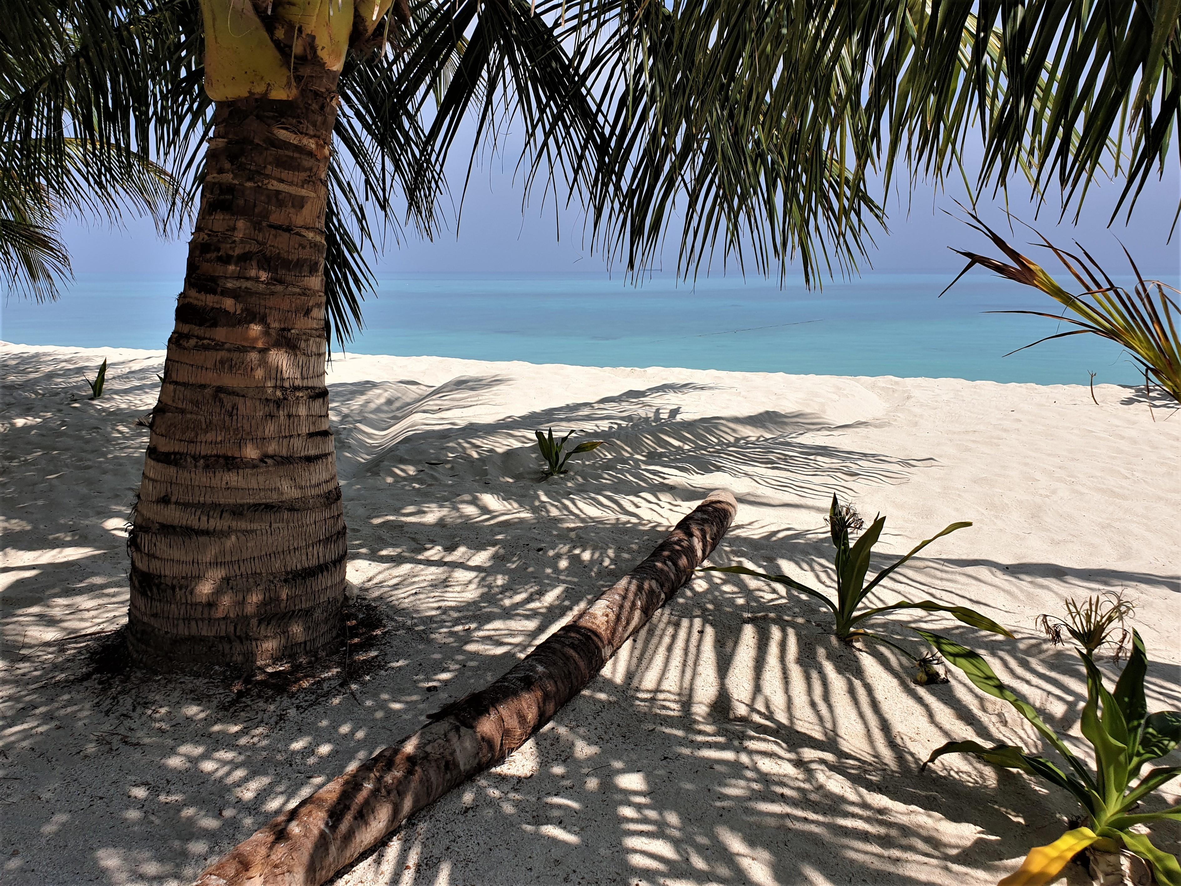 Wat kost dat nou één weekje Malediven en wat valt er te beleven naast zon, zee strand?