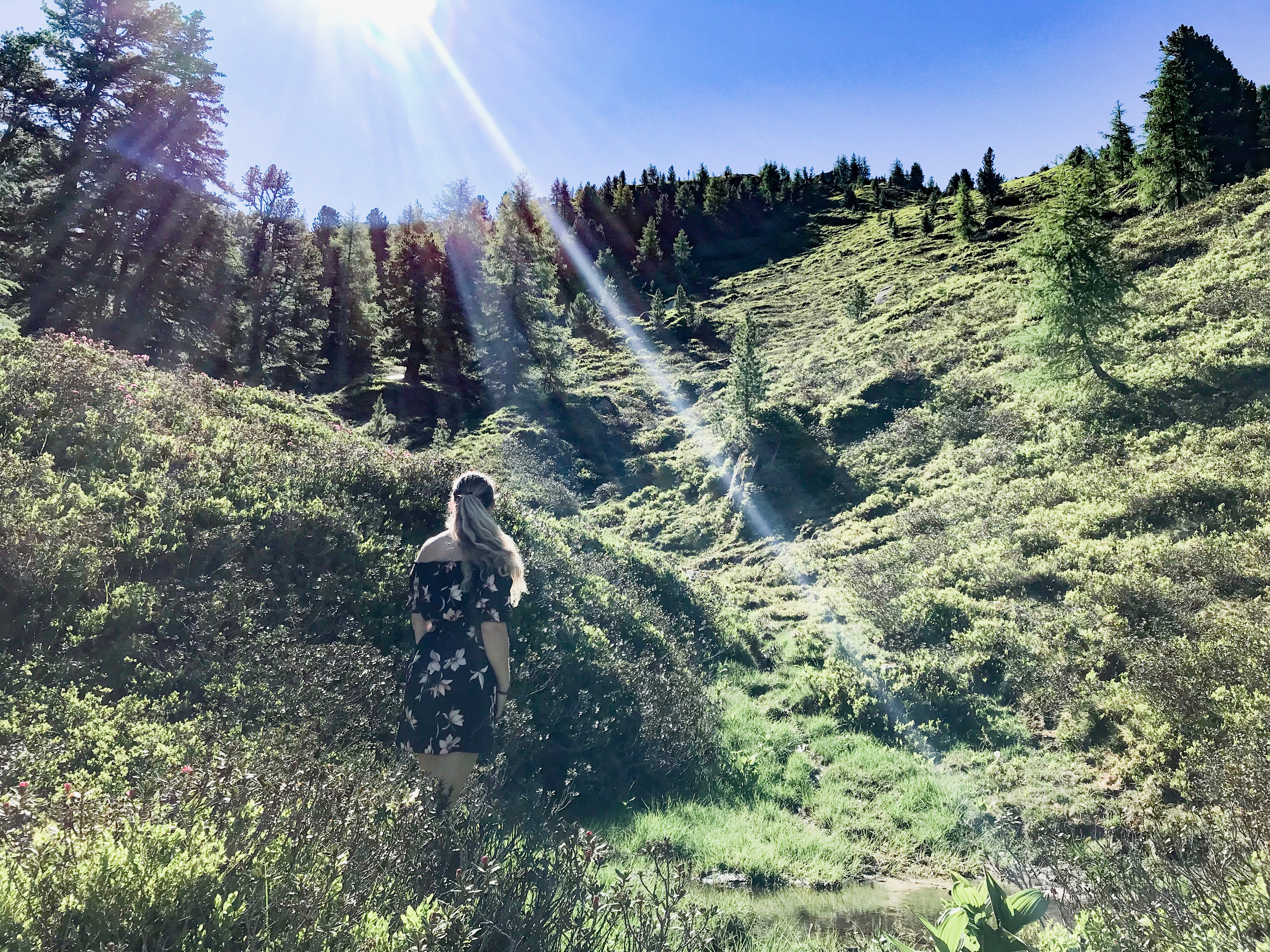 Droomzomer in Oostenrijk, Gasteinertal