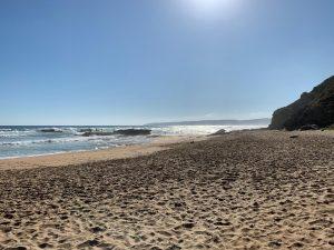 Whale Coast route strand